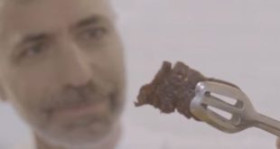 Scientists successfully produced cultivated meat in Space
