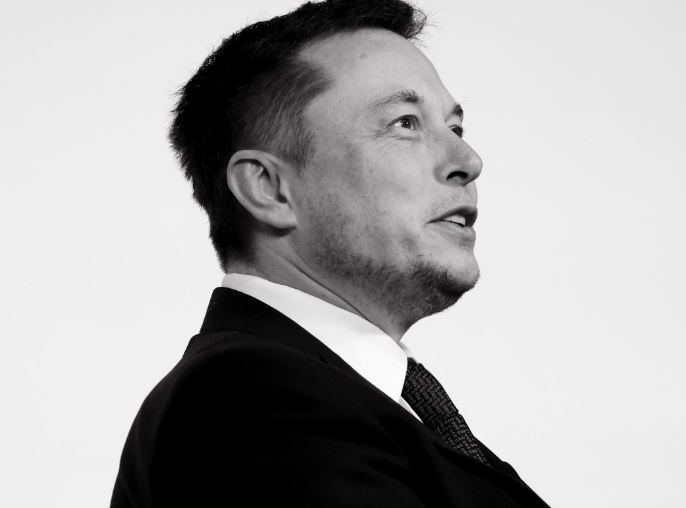 Elon musk donates $1 Million and tops the list of #teamtree organization, confirmed by MrBeast